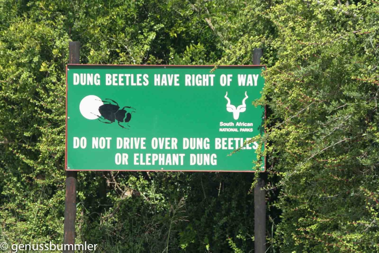 Addo Elephant Park Eingang
