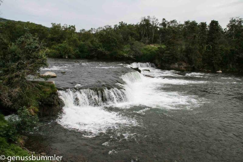 Brooks Falls Katmai