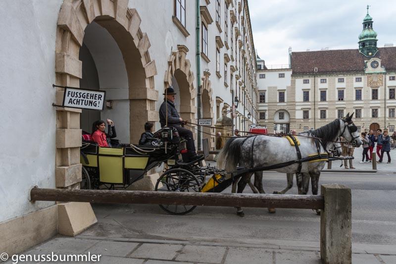 Rückblick Wien Fiaker