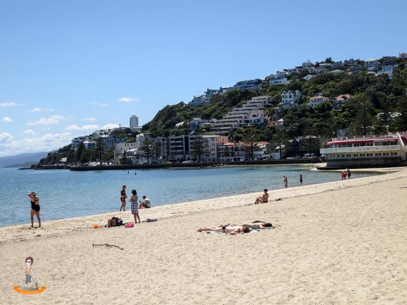 Neuseeland Wellington Strand