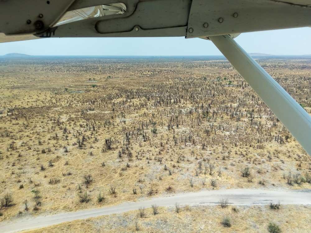 Botswana Savute Chobe Nationalpark Flug
