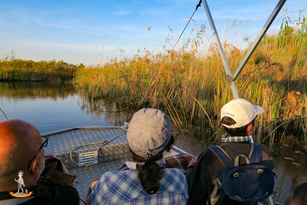 Okavango Delta Safari Boot