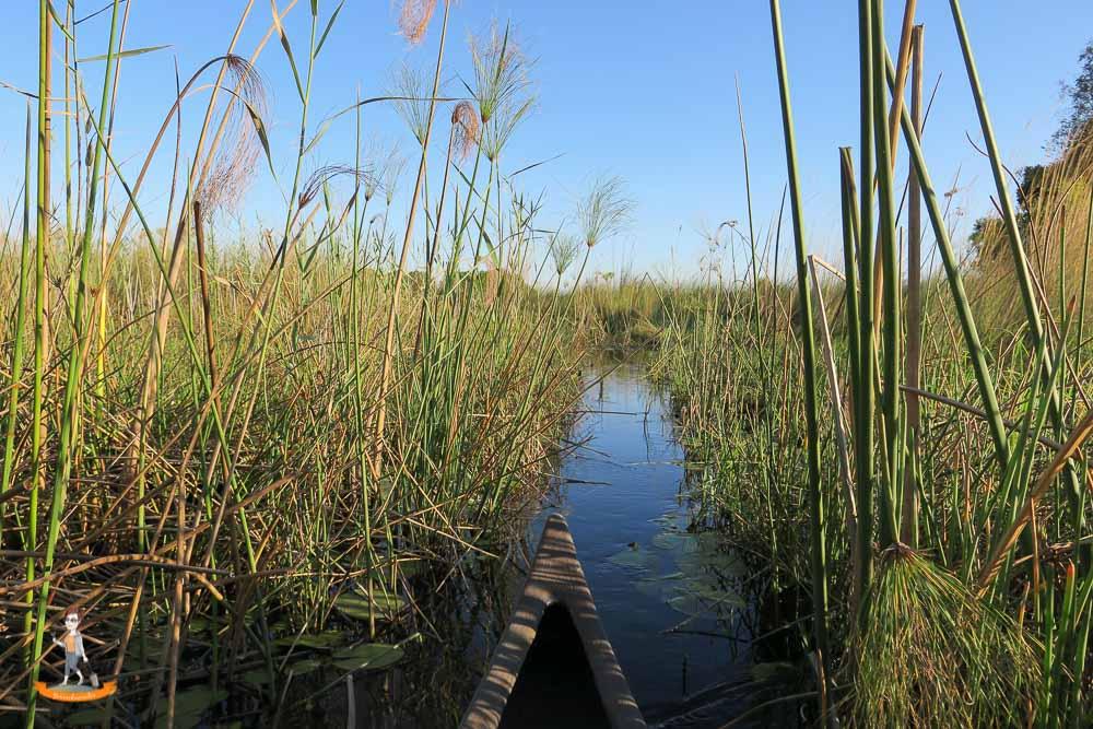 Okavango Delta Safari Kanal