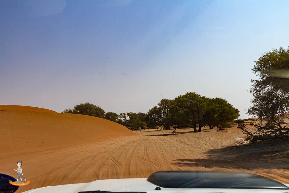 Strasse nach Sossusvlei Dead Vlei Namibia