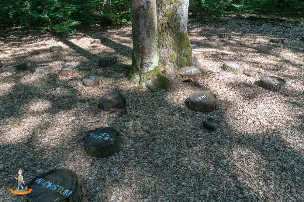 Bad Kissingen Wald für die Seele
