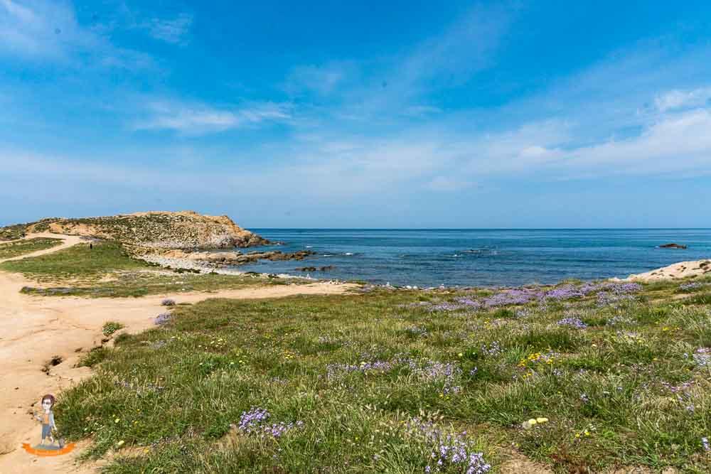 Sardinien Süden Highlights