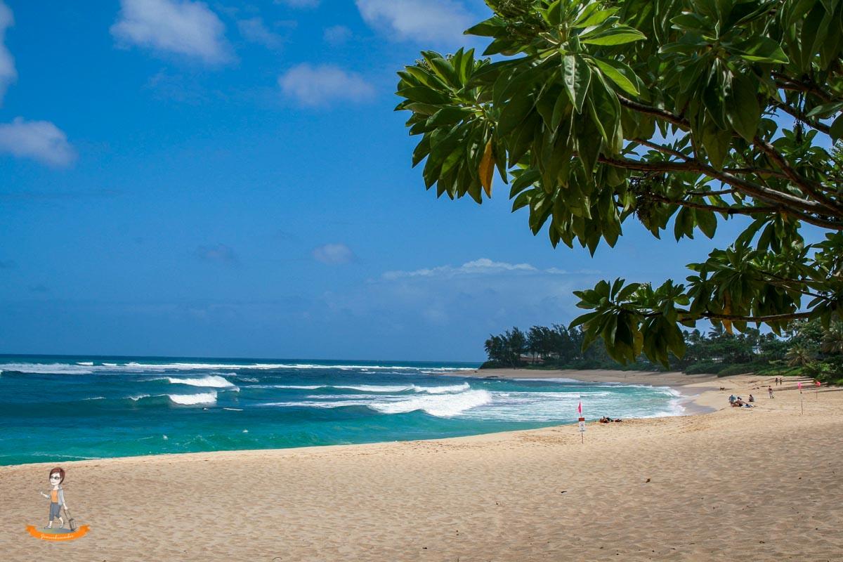 Reiseziel im Winter Strand von Hawaii