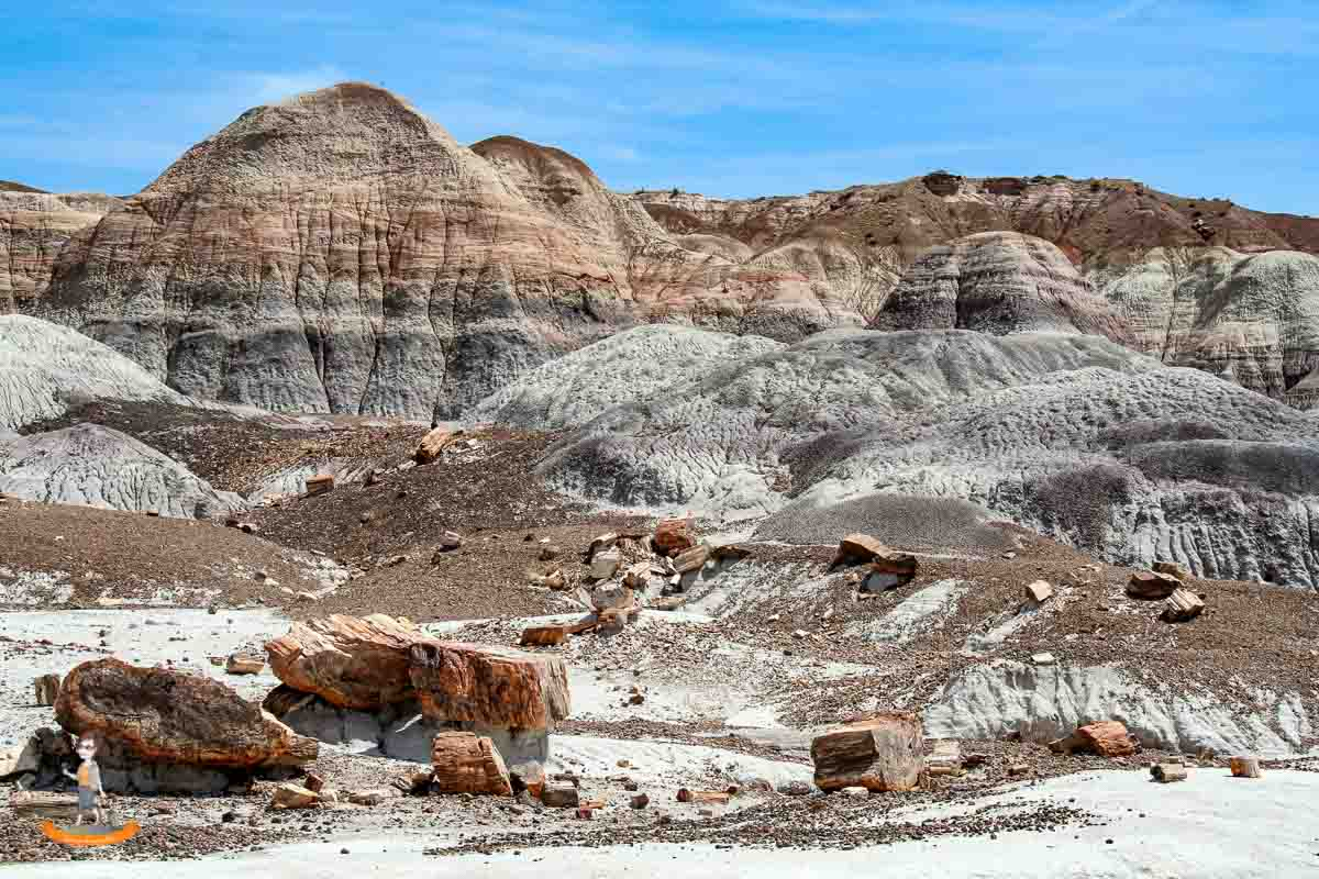 Petrified Forest USA Westen Nationalpark